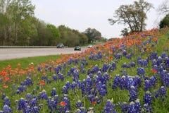 Estrada cénico com flores fotografia de stock