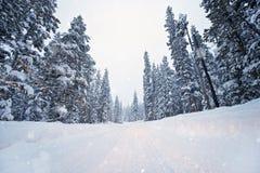 Estrada cênico do inverno imagens de stock