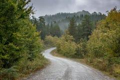 Estrada cênico nas montanhas Imagem de Stock