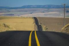Estrada, campos de trigo, Washington State foto de stock