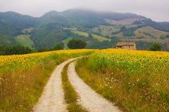 Estrada à casa de campo do país Fotos de Stock Royalty Free