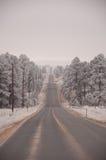 Estrada cinzenta Imagens de Stock