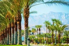 Estrada Coachella Valley das palmas Imagens de Stock Royalty Free