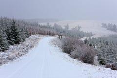 Estrada coberta com as nevadas fortes Fotos de Stock Royalty Free