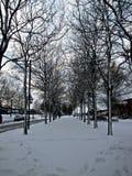 Estrada coberta na neve Fotografia de Stock