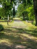 Estrada coberta velha no cemitério do bosque do carvalho fotos de stock