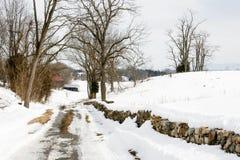Estrada coberto de neve Imagem de Stock