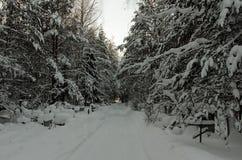 Estrada coberto de neve através do cemitério ortodoxo na floresta Imagem de Stock Royalty Free