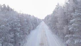 Estrada coberto de neve da floresta filme