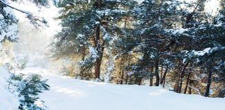 Estrada coberto de neve da montanha Imagens de Stock Royalty Free