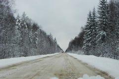 Estrada coberto de neve do inverno Floresta, natureza bonita e estrada cobertas com a neve Detalhes e close-up foto de stock royalty free