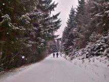 Estrada coberto de neve entre a floresta conífera imagens de stock