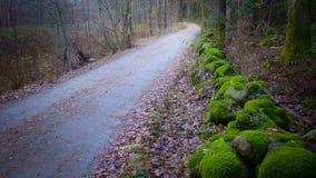 Estrada com cerca de pedra Imagens de Stock