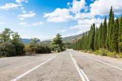Estrada com cipreste Fotos de Stock