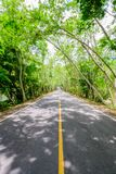 A estrada com não passa com linha é contínua, no lado o da estrada Fotografia de Stock