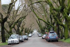 Estrada com os carros em ambos os lados Fotografia de Stock