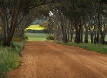 Estrada com uma vista Fotografia de Stock