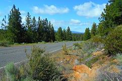 Estrada com uma vista Imagens de Stock