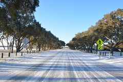 Estrada congelada na praia Foto de Stock Royalty Free