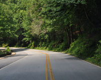 Estrada curvada Imagem de Stock