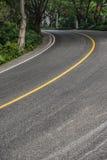 Estrada curvada com árvores Foto de Stock Royalty Free