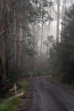 Estrada curvada com dois sinais da construção em qualquer um imagem de stock royalty free