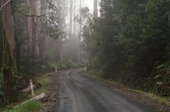 Estrada curvada com marcadores da estrada imagem de stock royalty free