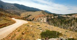 Estrada curvada da angra através das montanhas de Pryor em Montana Fotos de Stock Royalty Free