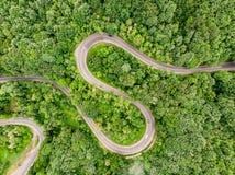 Estrada curvada de enrolamento no meio do usi aéreo do tiro da floresta Fotos de Stock