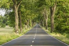 Estrada da aleia Imagem de Stock Royalty Free
