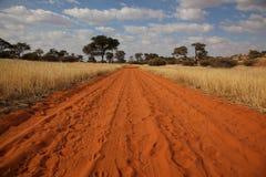 Estrada da areia no deserto de kalahari Fotografia de Stock