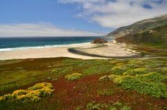 Estrada da Costa do Pacífico, movimentação de 17 milhas, Califórnia Foto de Stock Royalty Free