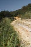 Estrada da duna Imagem de Stock Royalty Free