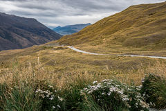 Estrada da escala da coroa, Wanaka, Nova Zelândia Foto de Stock Royalty Free