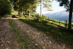 Estrada da montanha da aventura, paisagem colorida do campo imagem de stock
