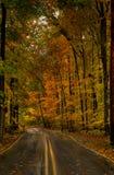 Estrada da montanha de Maryland Imagens de Stock Royalty Free