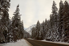 Estrada da montanha no inverno Imagem de Stock