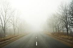 Estrada da névoa Foto de Stock Royalty Free