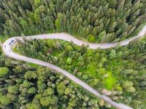 Estrada da estrada na floresta verde foto de stock royalty free