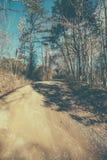 Estrada da natureza Imagens de Stock