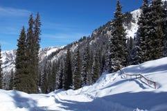 Estrada da neve em montanhas do inverno Fotografia de Stock Royalty Free