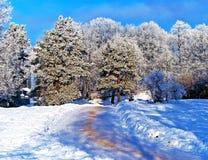 Estrada da neve no parque da cidade fotos de stock