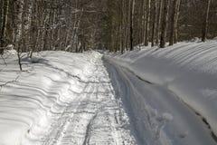 Estrada da neve pavimentada na floresta do inverno Fotografia de Stock Royalty Free