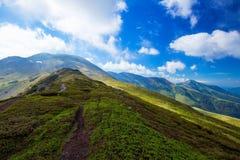 A estrada da paisagem da montanha, Carpathians ajardina, Romênia Foto de Stock
