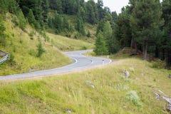 Estrada da passagem de montanha Foto de Stock Royalty Free