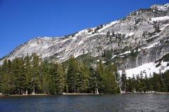 Estrada da passagem de Tioga, parque nacional de Yosemite Imagem de Stock