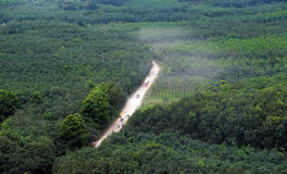 Estrada da poeira através da selva verde em Vietname Imagem de Stock Royalty Free