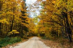 A estrada da queda na floresta Pictured balança o nacional Lakeshore Munisin Imagem de Stock