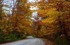 A estrada da queda na floresta Pictured balança o nacional Lakeshore Munisin Foto de Stock Royalty Free