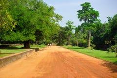 Estrada da rotina no parque perto de Sigiriya Lion Castle, Sri Lanka imagens de stock royalty free